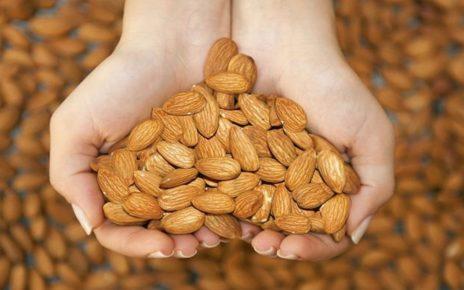 Manfaat Besar Kacang Almond