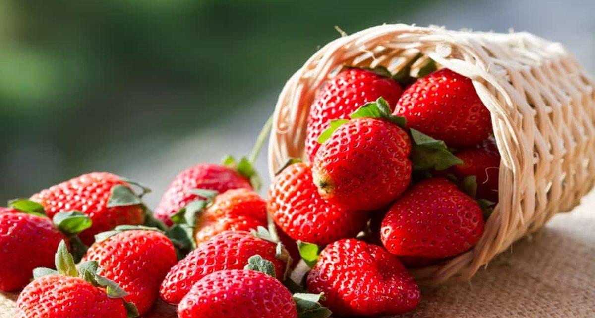 Manfaat Buah Stroberi. Bagus Buat Kesehatan